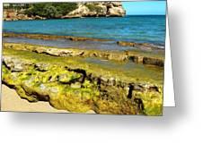Beach At Dominican Republic Greeting Card