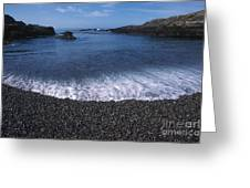 Beach At Point Lobos Greeting Card by Stan and Anne Foster