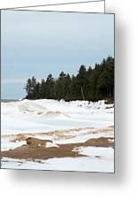Beach Of Ice Greeting Card