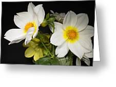 Beautiful Autumn White Flowers Greeting Card