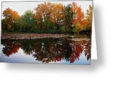 Beautiful Fall ... Greeting Card