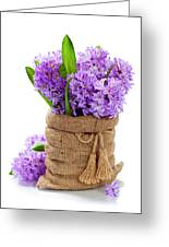 Beautiful Hyacinths Greeting Card