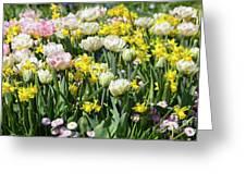 Beautiful Spring Flowers Greeting Card