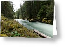 Beautiful White Water Greeting Card