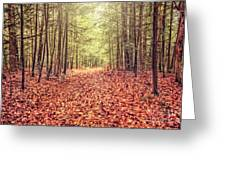 Before The Last Leaf Falls Greeting Card