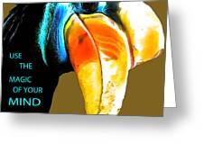 Believe Toucan Greeting Card by Debra     Vatalaro