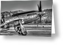 Betty Jane P51d Mustang At Livermomre Greeting Card