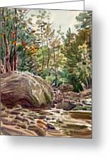 Big Rock At Sope Creek Greeting Card