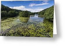 Black River Hancza In Turtul.  Greeting Card