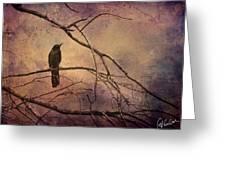 Blackbird 2 Greeting Card