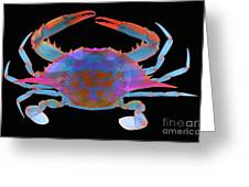 Blue Crab, X-ray Greeting Card