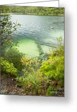 Blue Lake Stradbroke Island Greeting Card