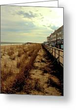 Boardwalk In Winter Greeting Card