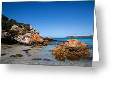 Boat Harbour Beach Greeting Card