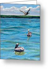 Boating In Fort Myers Greeting Card