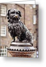 Bobby Statue, Edinburgh, Scotland Greeting Card