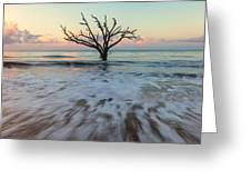 Botany Bay Morning Greeting Card