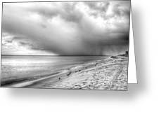 Brewing Storm Greeting Card
