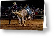 Bronco Riding Greeting Card