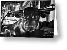 Bull Sculpture At Night Birmingham Bullring England Uk Greeting Card