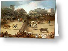 Bullfight In A Divided Ring Greeting Card