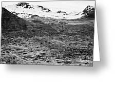 bushes and mosses growing on Skaftafell glacier end moraine Vatnajokull national park in Iceland Greeting Card