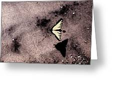 Butterfly And Sand Wc Greeting Card
