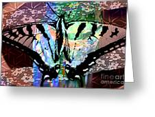Butterfly Pet Greeting Card