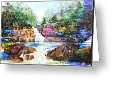 Buttermilk Falls IIi Greeting Card by Patricia Allingham Carlson