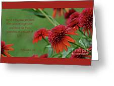By Grace You Have Been Saved Greeting Card