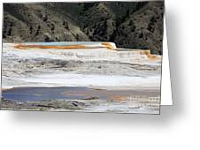 Canary Spring At Mammoth Hot Springs Upper Terraces Greeting Card