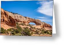 Canyon Badlands And Colorado Rockies Lanadscape Greeting Card