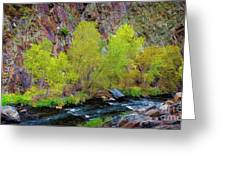 Canyon Color Greeting Card