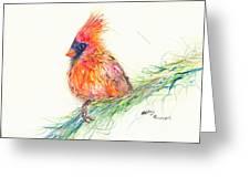 Cardinal On Branch Greeting Card
