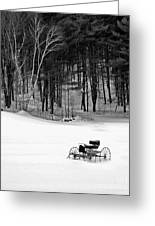 Carriage In A Field Of Snow Greeting Card
