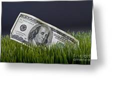 Cash In The Grass. Greeting Card