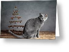 Cat Christmas Greeting Card