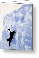 Cat Jumping From A Wall Greeting Card