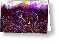 Cat Kitten Mieze Sunset Sun Grass  Greeting Card