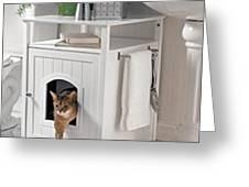 Cat Litter Box Furniture Greeting Card