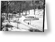 Central Park 6 Greeting Card by Wayne Gill