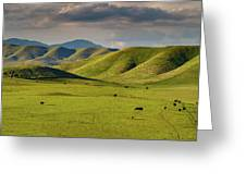 Central Valley California Greeting Card