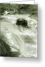 Cherry Creek White Water Greeting Card by Anne Norskog