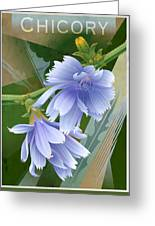 Chicory Cornflower Print Greeting Card