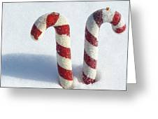Christmas Candy Canes On Real Snow Greeting Card