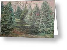 Christmas Tree Lot Greeting Card by Rosemary Kavanagh