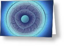 Circular Abstract Art Greeting Card