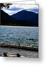 Clear Lake Washington Greeting Card