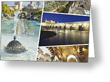 Collage Of Cordoba  Greeting Card