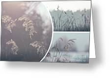 Collage Of Winter Time In Poland. Greeting Card